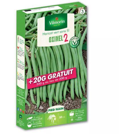 Graines de Haricot Nain Vert Oxinel 2 200grs + 20 grs gratuits