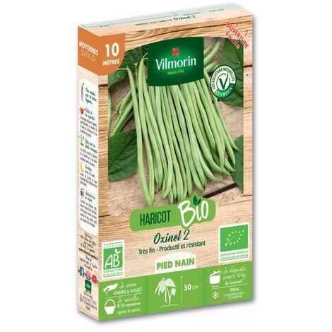 Graines de Haricot Nain Vert Oxinel 2 BIO - 10 metres