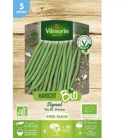 """main image of """"Graines de Haricot Nain vert SIGNAL BIO - 5 metres"""""""