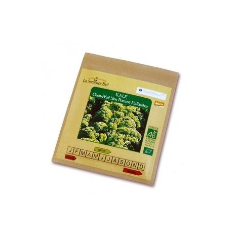 Graines de Kale chou frisé non pommé Halbhoher