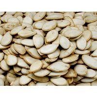 Graines de potiron 5 kg