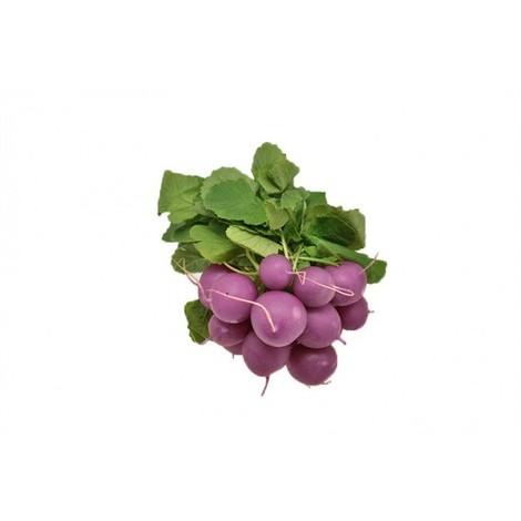 graines de Radis Rond Violet Malaga - sachet de ~80 graines (2g)