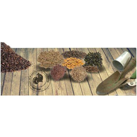 Graines de Roquette cultivée BIO   Sachet de 0,18 gr. - +/- 75 graines