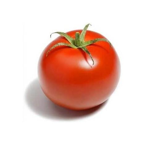 graines de Tomates Classiques F1 - sachet de ~50 graines (1g)