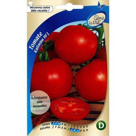 Graines de tomates Kalimba