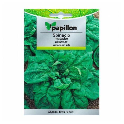 Graines Épinards précoces (8 grammes) graines légumes, horticulture, horticola, graines verger.