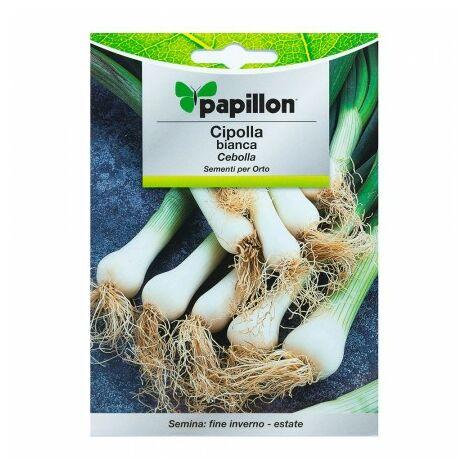 Graines oignon blanca (4 grammes) graines légumes, horticulture, horticola, graines verger.