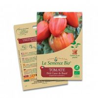 Graines Tomate petit coeur de boeuf - 20 graines - La Semence Bio