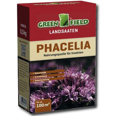 Greenfield Phacelia 500 g phacélie, pâturage pour abeilles, fertilisation de verdissement, culture dérobée