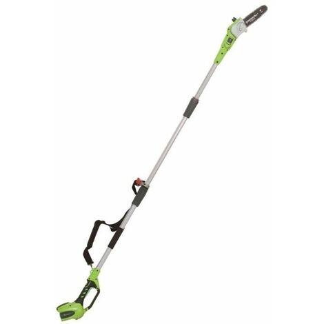 GREENWORKS Elagueuse électrique sur perche G40PS20K2 - 40 V - 1 batterie + 1 chargeur - Vert