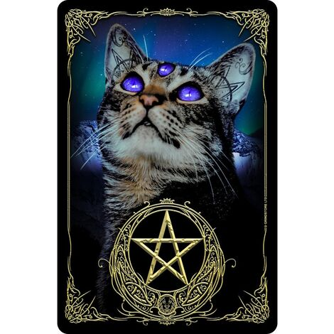 Greet Tin Card Witchy Familiar Plaque (One Size) (Multicoloured)