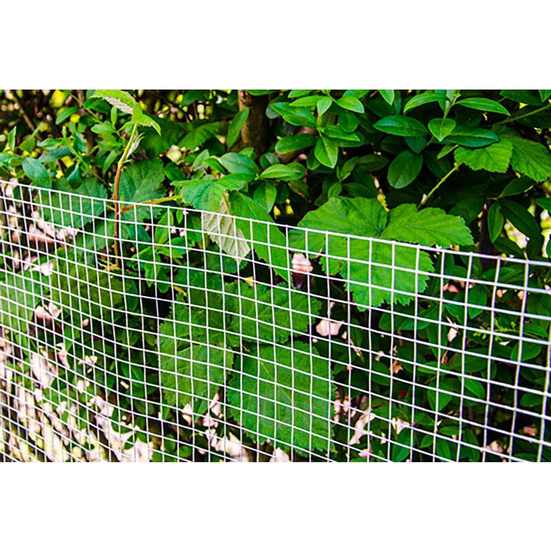 Grillage pour plantes et animaux   Grillages pour enceintes et clôtures    Idéal pour le jardin volières poulaillers clapiers etc   Longueur de ...