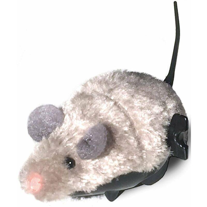 Cat&rina - Gros rat.