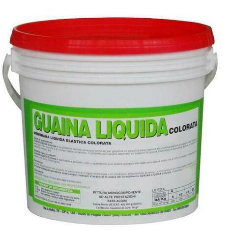 Guaina liquida colorata da kg 20 impermebilizzante