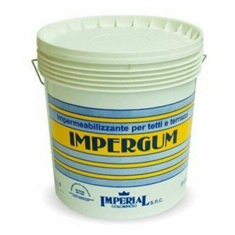 Guaina liquida elastomerica impermeabilizzante lt 5 impergum terrazza bianco