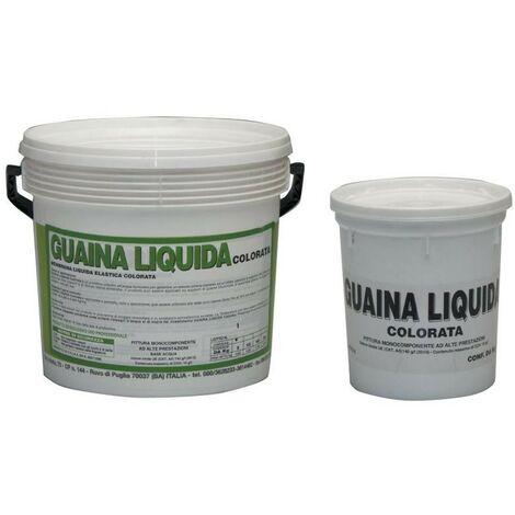 Guaina liquida resinosa colore rosso kg.20 - Salone
