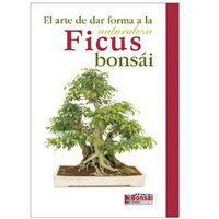 Guía Ficus Bonsái