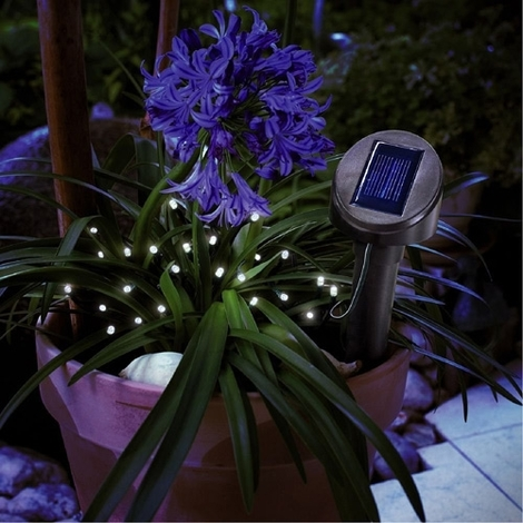 Guirlande solaire 24 led blanc froid
