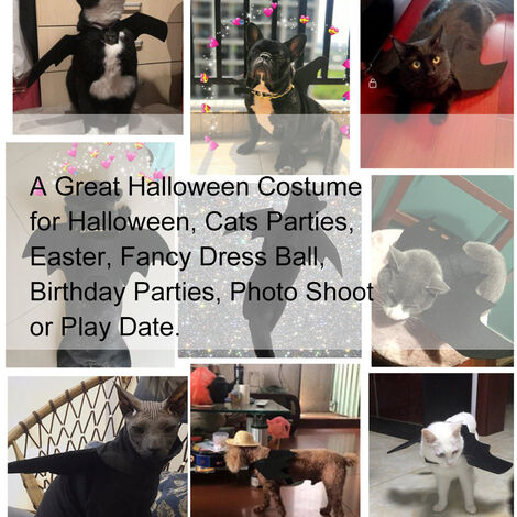 Halloween Pet Bat Costume Cat Bat Costume