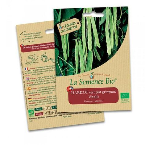Haricot vert plat Vitalis - 75 gr - La Semence Bio