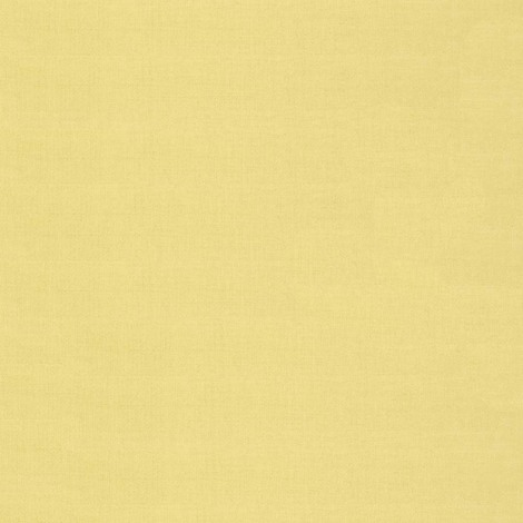 Harlequin Lagoon Ocean Design Vinyl Kitchen and Living Room Wallpaper Roll (Lime 10906)