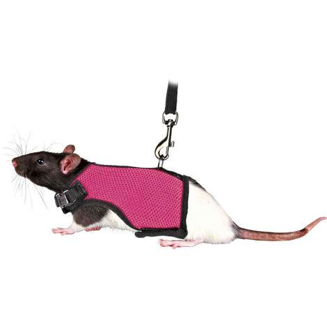 """main image of """"Harnais doux avec laisse 1.2 m pour rats"""""""