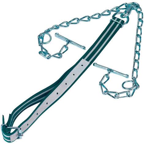 Harnais pour bovins complet avec collier et chaîne