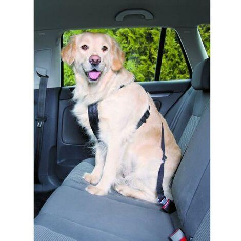 Trixie  Harnais de dressage pour chien