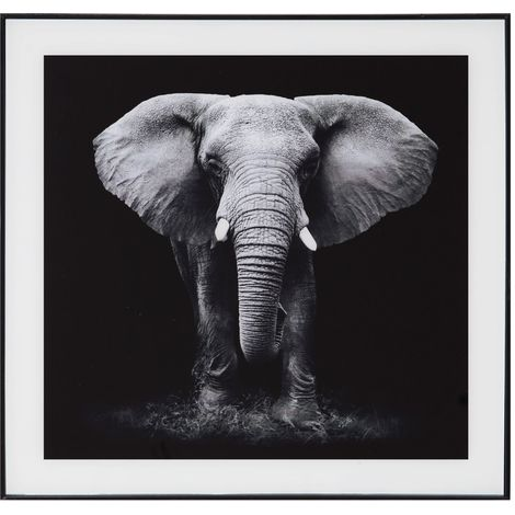 Hestia Framed Glass Wall Art - Elephant
