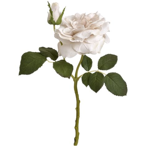 Hill Interiors Artificial Short Stem Garden Rose (One Size) (White)