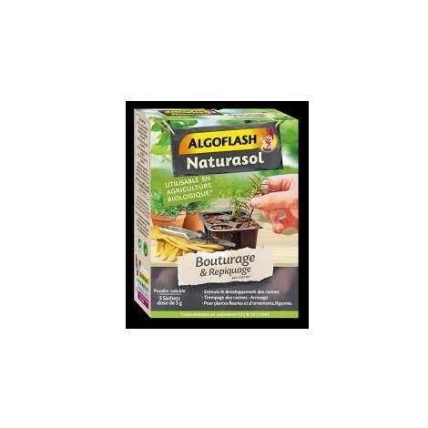 Hormone de Bouturage 5 dose de 5g Algoflash