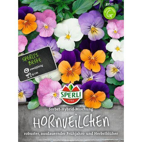 Semences KIEPENKERL duftblumen mélange /'violettes/'