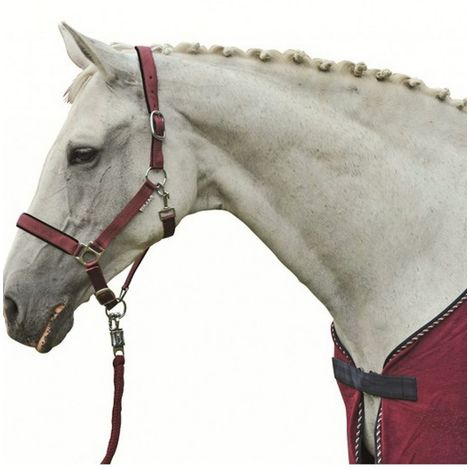 Horse bedding model Soft and padded Stars HKM Classic