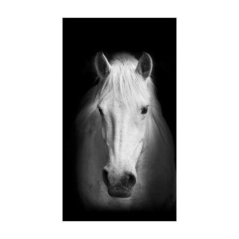 Horse, rideau imprimé cheval blanc de face sur fond noir 140x245 cm, 1 part