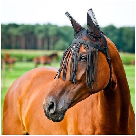 HORZE Bonnet masque anti,mouche naseaux pour chevaux , Taille Poney , Brun  clair