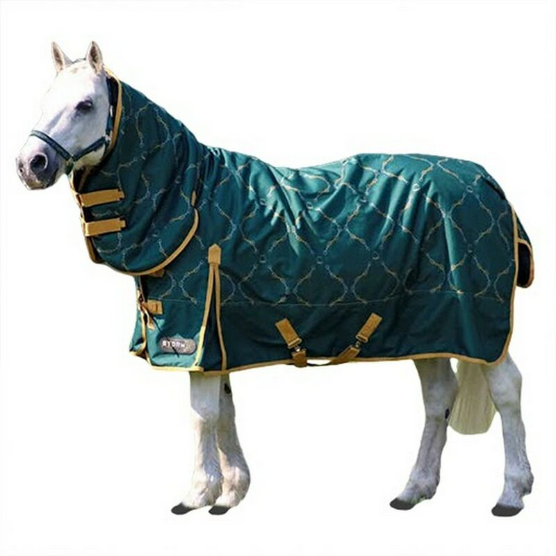 Image of Elegant Stirrup And Bit Horse Turnout Rug (4´ 6') (Forest Green/Gold/Silver) - HY
