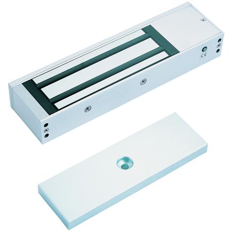 IGE iGEM4000NF - Ventouse Magnétique en applique 600kg 24/48V - NFS 61-937