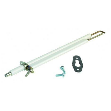Ignition electrode - ACV : 10800313