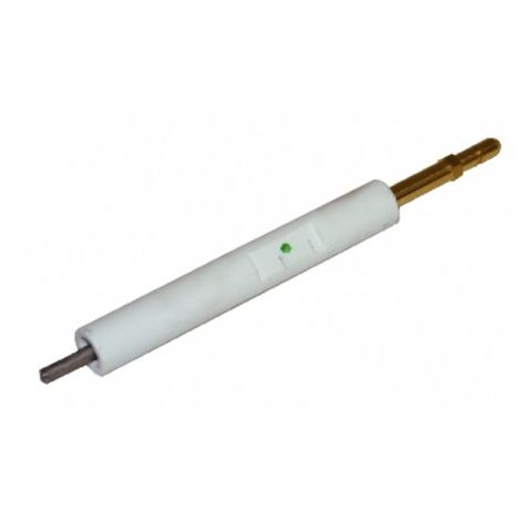 Ignition electrode BS1 - RIELLO : 3008930