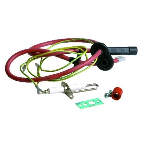 Ignition electrode kit - RIELLO : 4365436