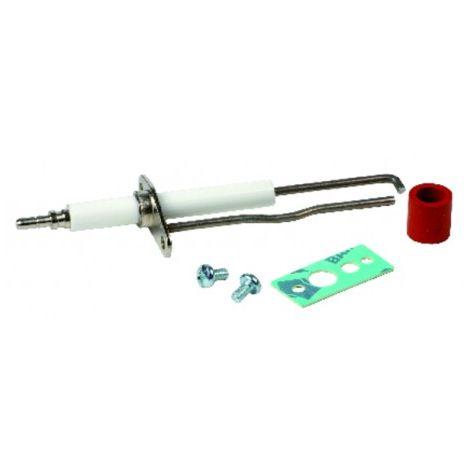 Ignition / flame sensing electrode - RIELLO : 4365986