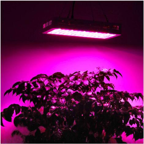 Iluminación para horticultura