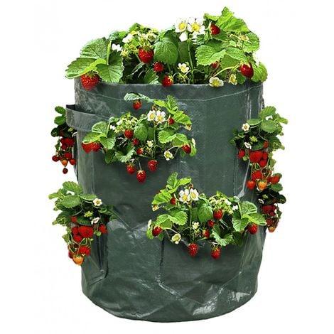 Bolsas para plantar