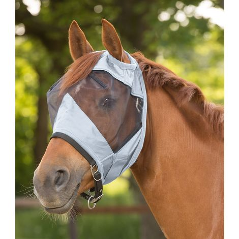 Protection pour chevaux