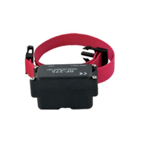 Dog anti-fugue collar