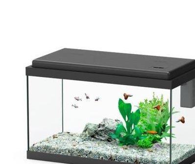 Nano acquari
