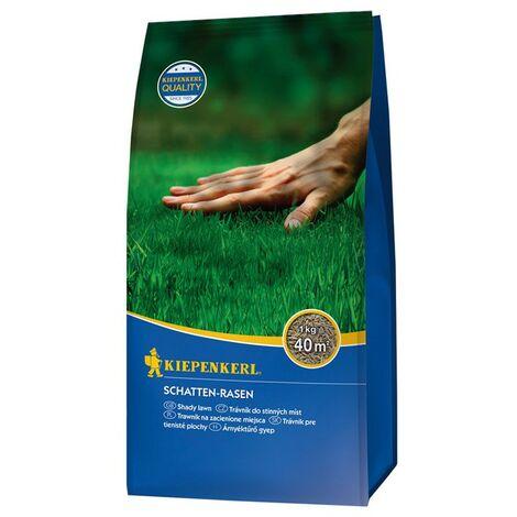 Seed Speciale Erba Ombreggiato Zona 1 Kg