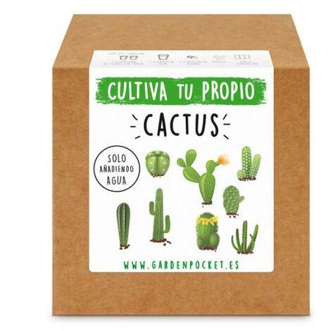 Kit siembra Cactus Garden Pocket