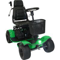 Hillman Warrior GT Sport Green Golf Buggy with No Batteries or Charger