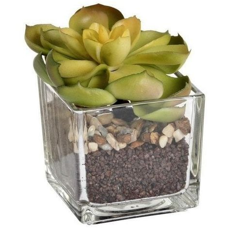 Hill Interiors Miniature Artificial Succulent Plant And Pot (One Size) (Clear)